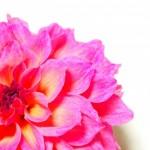 【BeforeAfter】似合う色に笑顔をプラスして、もっと魅力開花!